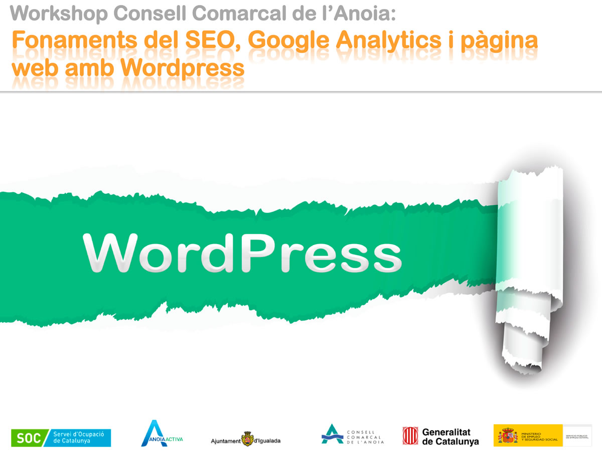Fonaments Del SEO, Google Analytics I Pàgina Web Amb WordPress